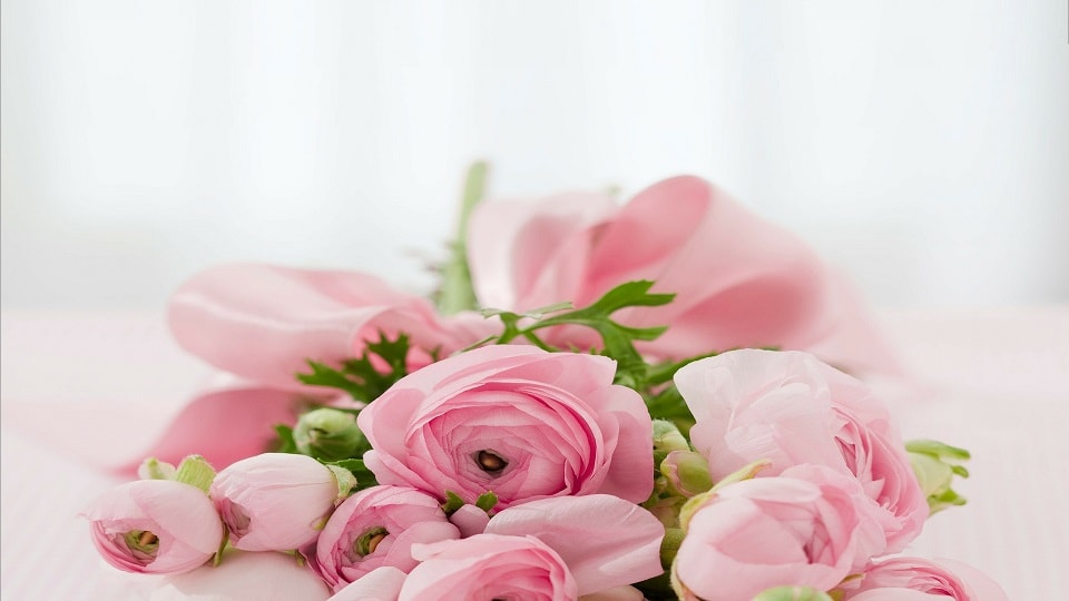 roses 142876 1920 1 - BingSiteAuth.xml
